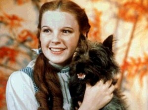 dorothy gale_2